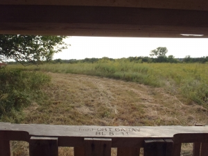 View from a hunting ground blind after preparing a good hunting environment