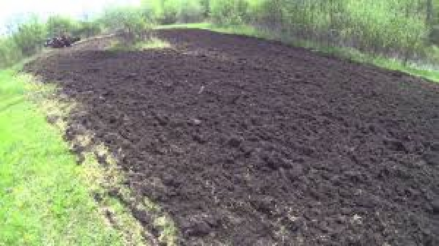 Build a DYI Food Plot
